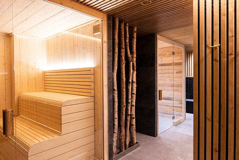 Sauna & douche froide à Anse